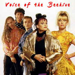 Voice Of The Beehive